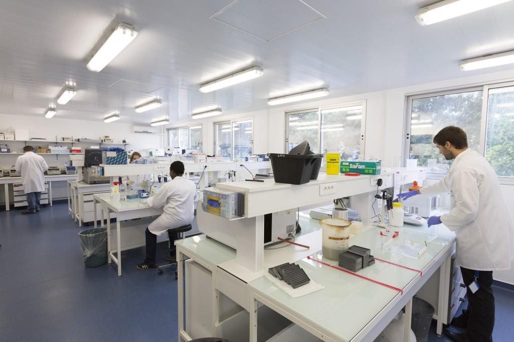 Salle de post-amplification du laboratoire des interactions virus-hôtes