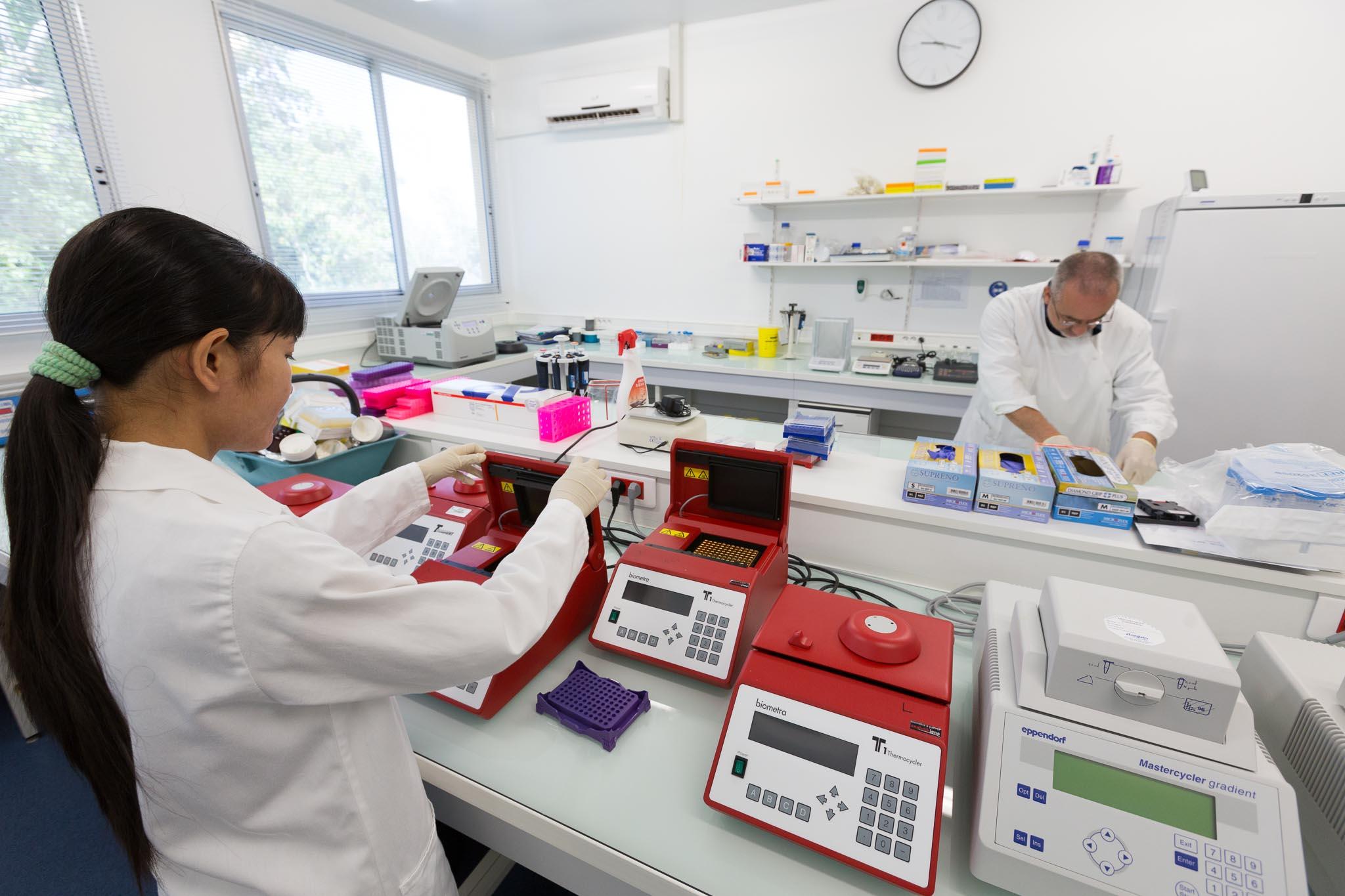 Pièce ampli du labo de parasitologie