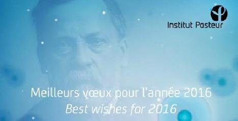 L'Institut Pasteur de la Guyane vous présente ses meilleurs vœux pour l'année 2016