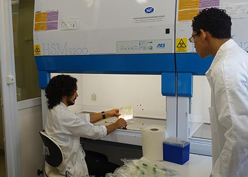 Démonstration de contrôle microbiologique par Léo Leclerc
