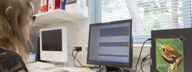 Du calcul intensif pour détecter des virus émergents