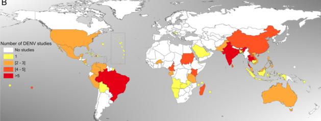 Les études de séroprévalence des arbovirus dans le monde revues par les chercheurs de l'IP Guyane