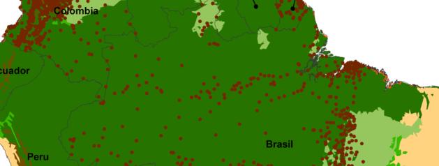 Décrire la carte de risque pour la leishmaniose cutanée chez l'homme dans le biome de la forêt néotropicale
