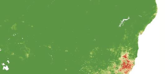 Épidémiologie spatiale de la fièvre jaune au Brésil